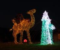Μαγικός βασιλιάς - διακόσμηση Χριστουγέννων Στοκ φωτογραφίες με δικαίωμα ελεύθερης χρήσης