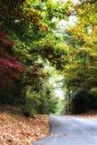 Μαγικός μυστικός δρόμος φθινοπώρου στοκ εικόνα με δικαίωμα ελεύθερης χρήσης