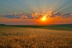 μαγικός ουρανός στοκ φωτογραφίες με δικαίωμα ελεύθερης χρήσης