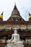 Μαγικός του άσπρου ψαμμίτη Βούδας η τοποθέτηση της περισυλλογής Στοκ Εικόνα