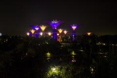 Μαγικός φωτισμός λουλουδιών, Σιγκαπούρη Στοκ φωτογραφίες με δικαίωμα ελεύθερης χρήσης