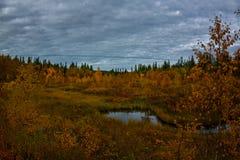 Μαγικό αρκτικό φθινόπωρο στο μακρινό ρωσικό Βορρά με τη λίμνη στοκ εικόνες με δικαίωμα ελεύθερης χρήσης