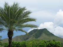 Μαγικό βουνό στο νησί της Μαργαρίτα, Βενεζουέλα Στοκ Εικόνες