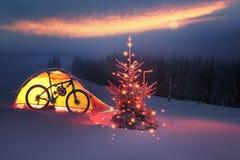 Μαγικό δέντρο στα Χριστούγεννα στοκ φωτογραφία με δικαίωμα ελεύθερης χρήσης