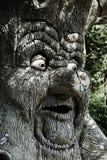 μαγικό δέντρο Στοκ Εικόνα