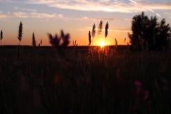 Μαγικό ηλιοβασίλεμα στοκ φωτογραφίες με δικαίωμα ελεύθερης χρήσης