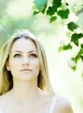 μαγικό καλοκαίρι Στοκ εικόνες με δικαίωμα ελεύθερης χρήσης