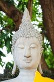 Μαγικό κεφάλι του ψαμμίτη Βούδας με την κίτρινη τήβεννο Στοκ Εικόνες