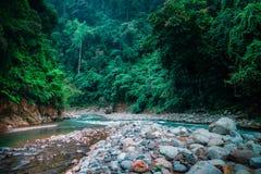 Μαγικό τοπίο του τροπικού δάσους και του ποταμού Ο Βορράς Sumatra, Ινδονησία Στοκ φωτογραφία με δικαίωμα ελεύθερης χρήσης
