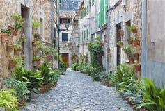 Μαγιόρκα - οι παλαιοί διάδρομοι του χωριού Valldemossa στοκ εικόνες με δικαίωμα ελεύθερης χρήσης