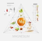 Μαγνήσιο Τρόφιμα με την υψηλότερη περιεκτικότητα σε μαγνήσιο ελεύθερη απεικόνιση δικαιώματος