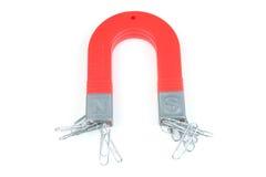 μαγνήτης paperclips στοκ φωτογραφία
