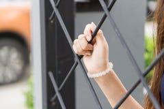 Μαζεψτε με το χέρι το κλουβί Στοκ Εικόνα