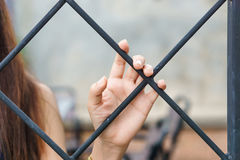 Μαζεψτε με το χέρι το κλουβί Στοκ Φωτογραφίες
