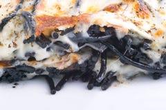 Μακαρόνια με το ψημένο τυρί Στοκ φωτογραφία με δικαίωμα ελεύθερης χρήσης