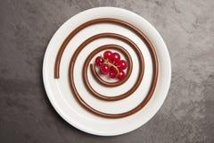 Μακαρόνια σοκολάτας με τα κόκκινα μούρα Στοκ εικόνες με δικαίωμα ελεύθερης χρήσης