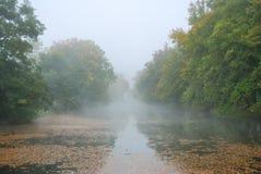 Μακριά λίμνη και δασικά δέντρα πάρκων στην ομίχλη Στοκ φωτογραφία με δικαίωμα ελεύθερης χρήσης
