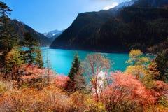 Μακριά λίμνη το φθινόπωρο Jiuzhaigou φυσική Sichuan, Κίνα Στοκ εικόνα με δικαίωμα ελεύθερης χρήσης