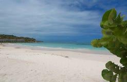 Μακριά ατλαντική ακτή κόλπων - καραϊβική θάλασσα - Αντίγκουα και Μπαρμπούντα Στοκ Φωτογραφία
