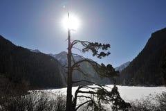 Μακριά λίμνη Jiuzhaigou Στοκ φωτογραφίες με δικαίωμα ελεύθερης χρήσης
