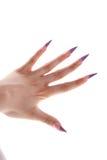 Μακριά νύχια γυναικών Χρωματισμένη μπλε στιλβωτική ουσία καρφιών Στοκ εικόνες με δικαίωμα ελεύθερης χρήσης