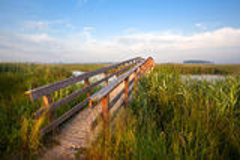 Μακριά ξύλινη γέφυρα για τα ποδήλατα Στοκ εικόνα με δικαίωμα ελεύθερης χρήσης
