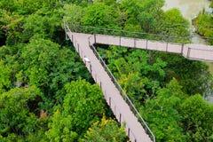 Μακριά ξύλινη γέφυρα στο πράσινο δασικό πάρκο και το κανάλι κοντά Στοκ φωτογραφία με δικαίωμα ελεύθερης χρήσης