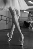 Μακριά πόδια του ballerina στο toeshoe Στοκ εικόνες με δικαίωμα ελεύθερης χρήσης