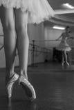Μακριά πόδια του ballerina στο toeshoe Στοκ Εικόνα