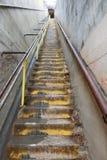 Μακριά σκάλα στο κεφάλι διαμαντιών στοκ εικόνα