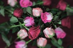 Μακριά τριαντάφυλλα μίσχων στους τόνους του ροζ στο κόκκινο ύφασμα στοκ εικόνα με δικαίωμα ελεύθερης χρήσης