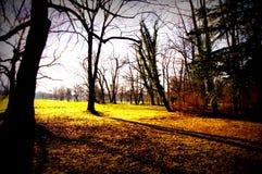 Μακριές σκιές της ρύθμισης του ήλιου Στοκ Φωτογραφία