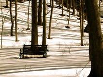 μακριές σκιές Στοκ Εικόνες