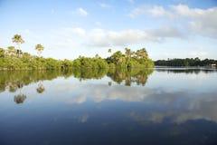 Μακρινή βραζιλιάνα οκνηρή ήρεμη αντανάκλαση ποταμών Στοκ Φωτογραφίες