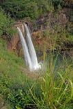Μακρινός καταρράκτης στο τροπικό δάσος στη Χαβάη Στοκ Εικόνες