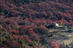 Μακρινό σπίτι στα δάση της Προβηγκίας, Γαλλία Στοκ φωτογραφίες με δικαίωμα ελεύθερης χρήσης