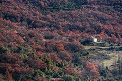 Μακρινό σπίτι στα δάση της Προβηγκίας, Γαλλία Στοκ εικόνα με δικαίωμα ελεύθερης χρήσης