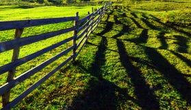 Μακριοί ξύλινοι φράκτης και σκιά στοκ εικόνες