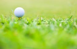 μακροεντολή γκολφ στοκ φωτογραφία με δικαίωμα ελεύθερης χρήσης