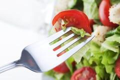 Μακροεντολή σαλάτας στοκ φωτογραφίες