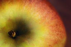 Μακροεντολή της Apple Στοκ Φωτογραφίες