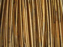 μακροεντολή thatch Στοκ εικόνα με δικαίωμα ελεύθερης χρήσης