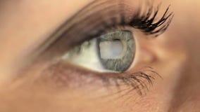 Μακροεντολή ματιών κοριτσιών γυναικών που φαίνεται όργανο ελέγχου, on-line φιλμ μικρού μήκους