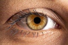 Μακροεντολή ματιών στοκ εικόνα με δικαίωμα ελεύθερης χρήσης