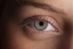 Μακροεντολή ματιών στοκ εικόνες