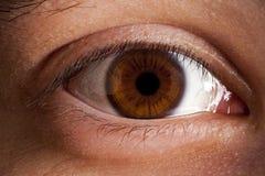 Μακροεντολή ματιών στοκ φωτογραφίες με δικαίωμα ελεύθερης χρήσης