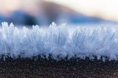 Μακροεντολή πάγου Στοκ Εικόνες