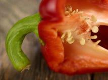 Μακροεντολή περικοπών πιπεριών κουδουνιών Στοκ φωτογραφίες με δικαίωμα ελεύθερης χρήσης