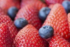 Μακροεντολή υποβάθρου φραουλών και βακκινίων Στοκ Εικόνες