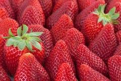Μακροεντολή υποβάθρου φραουλών Στοκ φωτογραφία με δικαίωμα ελεύθερης χρήσης